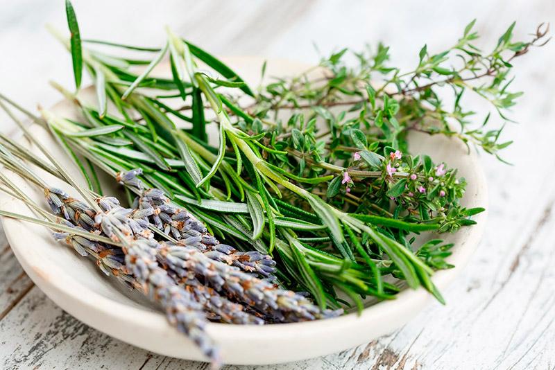Rosemary and vinegar
